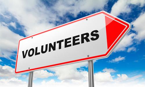 volunteering at SFBFS